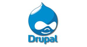 Drupal Web Development Company